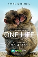 movie poster for One Life