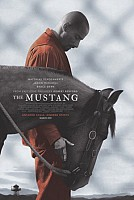 IMAGE FROM The Mustang
