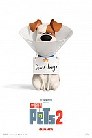 IMAGE FROM The Secret Life of Pets 2