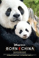 IMAGE FROM Born In China