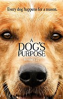 IMAGE FROM A Dog's Purpose