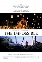 movie poster for The Impossible